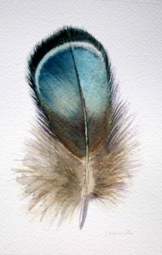 beautiful color palette Feather Painting, Feather Art, Blue Feather, Watercolor Feather, Nester, Feather Illustration, Illustration Art, Feather Meaning, Crayon