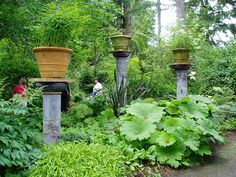 The Next Generation Gardener: A Pacific Northwest Treasure Aims for a Comeback