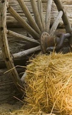 Loved our old wagon wheel.left it with the barn when we sold the farm . Country Charm, Country Life, Country Living, Old Wagons, Country Barns, Country Roads, Ranch Life, Country Scenes, Down On The Farm