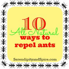 Naturally repel/kill ants.  Once they get in it's next to impossible to get them OUT!  Use these 10 natural remedies to get rid of ants without the use of harsh chemicals!
