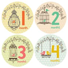 With a unique and stylish design, our bird cage themed little girl monthly baby stickers are the perfect way for mommy to share her excitement. Start making darling moments in just three steps: Just P