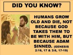 Humans grow old and die, not because God takes them to be with him, but because Adam sinned. Bible Teachings, Bible Scriptures, Bible Quotes, Jehovah S Witnesses, Jehovah's Witnesses Beliefs, Jehovah Witness, Bible Questions, Bible Knowledge, Bible Truth