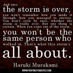 I weathered the storm of your abuse. I weathered the storm of uncertainty that clouded my judgment and allowed me to cede control to you. I weathered the storm of fighting for my children. And one thing is clear. I am not the same person who walked into the storm. And I thank you and I thank God for that.