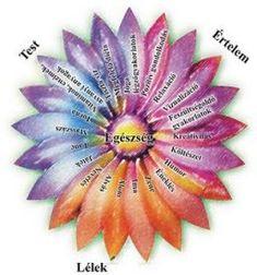 Kattintásra nagyít Holistic Medicine, Fruit, Facebook, Healthy, Photos, Diet, Type 1, Pictures, Health