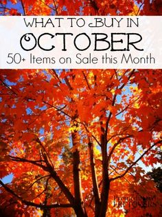 What to Buy in October - 50+ Items on Sale in October including items that will be included in seasonal sales, clearance sales, and in-season produce.