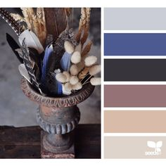 design seeds | for all who ♥ color ❤ liked on Polyvore featuring color inspiration and design seeds