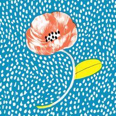 Strong but unique flower image