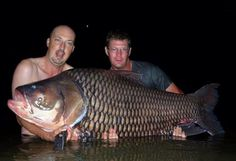 Carp Fishing in Thailand
