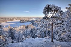 Stock Photo: Snowy landscape at Aulanko nature park in Finland. Icy lake and forest view from the viewpoint . Forest View, Lake View, Monet, Finland, Norway, Photo Galleries, Photo Editing, Scenery, Royalty