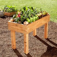 Gardening Gifts, Garden Gifts & Gifts for Gardeners | Williams-Sonoma