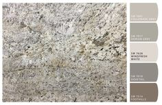 Chip It! By Sherwin Williams . Upload a pic and it recommends paint colors! Delicatus Brown Granite for Kitchen; Gray Greige color scheme