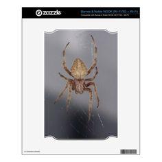 Garden Orb Weaver Spider NOOK Skins