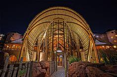 Kidani VIllage - Portrait Window Disney Vacation Club, Disney World Trip, Disney Vacations, Disney Trips, Disney Parks, Kidani Village, Bay Lake Tower, Disney Animal Kingdom Lodge, Resort Villa