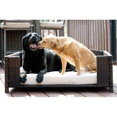 rattan rectangular pet sofa handsomely crafted rattan rectangular rh pinterest de