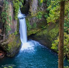 Toketee Falls, Oregon, USA. One of the most famous waterfalls in Oregon, the 113-foot Toketee Falls on the North Umpqua River is actually two falls, first dropping 28 feet in narrow gorge , then plunging another 85 feet over a wall of columnar basalt into a large pool. The lush green foliage surrounding the crystal clear water of the falls makes this waterfall rather spectacular. Photo by alicedoggett via Instagram #amitrips #travel #waterfall #usa