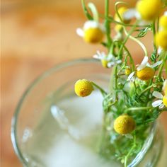 20 Unconventional Lemonade Recipes To Send Off Summer With Coctails Recipes, Sangria Recipes, Tea Recipes, Key Food, Vanilla Vodka, Thing 1, Flower Food, Coconut Rum, Edible Flowers