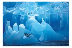 Google Image Result for http://www.starstore.com/acatalog/antarctic-wonderland.jpg%3Fw%3D300%26h%3D300