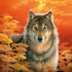 5D diy diamond painting animal Color Wolf pictures of rhinestones square cross stitch needlework home decorative relative gifts