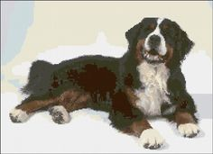 freebie Bernese Mountain Dog cross stitch -- how cute is she??