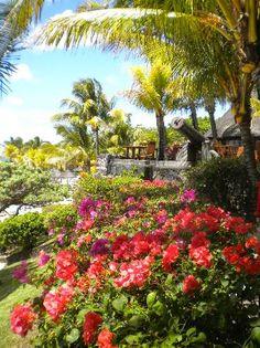"""Le Canonnier, Mauritius - Ristorante """"le Navigateur"""" (berri4591, Oct 2013) Fantastico anniversario di matrimonio"""