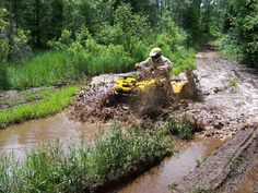 Dead Horse Run ATV Trail Chequamegon-Nicolet National Forest Wisconsin- just a reminder to wear boots- even if it hasn't rained! Atv Riding, Trail Riding, Nitro Circus, Monster Energy, Triumph Motorcycles, Wisconsin, Ducati, Motocross, Mopar