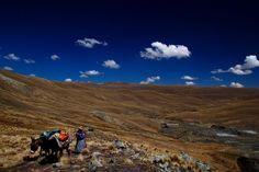 """""""Il est bien dommage que Paprika Tours ne propose pas un 3ème pays car c'est sans hésiter que nous serions repartis une 3ème fois avec vous !!!"""" Amandine Vayr ( France ) - Voyage privé en Bolivie"""