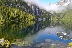 Self-Guided Kayak, Hiking & Biking Adventure Tours in BC, Canada. Custom trip planning for adventurers interested in exploring beautiful British Columbia. Vancouver Hiking, Whale Migration, Echo Lake, Gray Whale, Waterfall Hikes, Hiking Tours, Island Park, Adventure Tours, Trip Planning