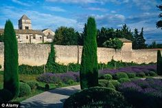 #The gardens of the Monastery of St-Paul-de-Mausole in St Remy de Provence were one of the scenes that inspired Van Gogh.