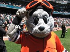 Lou Seal at the ballpark. Beloved mascot of the San Francisco Giants. San Fransico Giants, Bay Sports, Mlb Teams, Sports Teams, Sports Baseball, Mlb Giants, Baseball Mascots, Team Mascots, San Francisco Giants Baseball