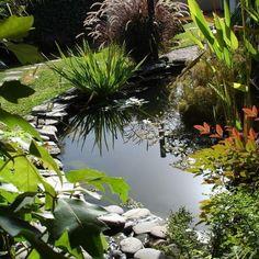 Descubra como criar jardins com desníveis                              …