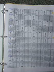 Daily Five Tracking Sheet...