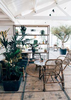 Home Decoration For Ganpati Cafe Interior, Interior Design, Fisher, Amsterdam, Hotels, Fire Table, Comfy Sofa, Dark Interiors, Beach Bars