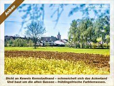 Kunst vom Feld: Anbau – www.kunstvomfeld.de