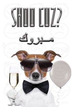 Check out this cute and funny Lebanese Congratulations card. See more Arabic cards at www.arabicgreetingcards.com.au