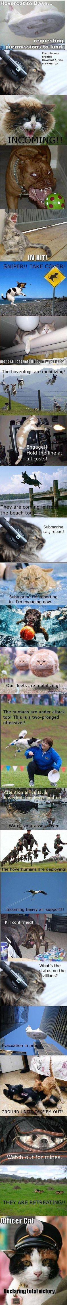 Incoming!  Hilarious, cats vs dogs military manouver... :D
