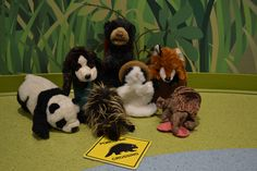 """September 2015.  THEME:  Shapes Around Us.  This puppet version of """"A Hunting We Will Go""""  was well-loved!  We put a cat in a hat, a pup in a cup, a bear in a chair, a fox in a box, an armadillo on a pillow, a porcupine on a sign and a panda on Miss Amanda!"""