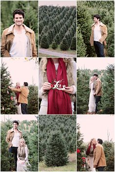 Christmas Tree Farm Engagement - from Kristin Vining. How cute is this??