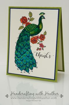Heather VanLooy: Handcrafting with Heather - Perfect Peacock Watercolor Card - Stampin' Up! - (coloring by watercolor not pens) Perfect Peacock, Handmade Thank You Cards, Love Cards, Pretty Cards, Bird Cards, Stamping Up Cards, Card Sketches, Watercolor Cards, Homemade Cards
