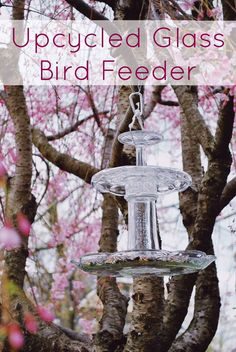 Outdoor Decorating/Gardening :     DIY Upcycled Bird Feeder made from recycled glass. Costs less than 15$ to make and the glass can be found at your local Goodwill.    -Read More –