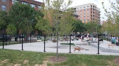 West Loop Dog Park in Chicago