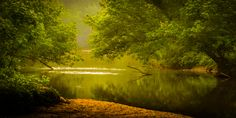 lazy green river