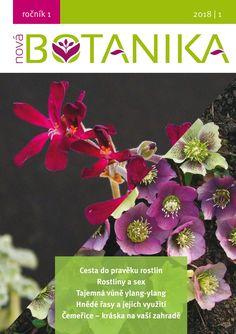 Speciální nabídka Superpředplatného Nové Botaniky pro studenty (i jako dárek pro studenty)  Místo 1300,- jen 989,- Kč za 4 ročníky Nové Botaniky (2018-2021) a plno dárků k tomu. Získejte rozhled a buďte napřed v botanice. :-) Ideální pro studenty zemědělských a přírodovědných oborů. Nebo si pořiďte i e-verzi se slevou - studentská cena za ročníky 2018 + 2019 je 89,- Kč místo 236,- Kč).  Platí do 17. listopadu. Kód v objednávce Student ´19.  Děkujeme, že jste s námi. Nova