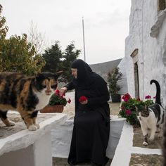 Decades after her first visit, Sister Irini returned to Amorgos to live in an old monastery she restored herself. Wonderful Places, Beautiful Places, The Holy Mountain, Five Star Hotel, Nun, View Image, Greece, Restoration, Meet