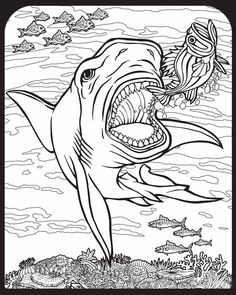 Willkommen bei Dover Publications - 9129