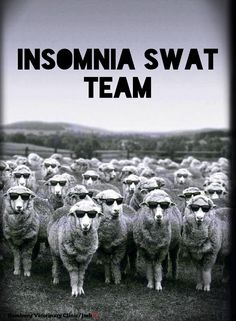 Insomnia | Can't sleep | So tired | Close your eyes | Need to sleep | Counting sheep | Time for bed | Animal humor | Long day | Longer night! Having a bit of Insomnia? Hope you won't need this team tonight! Here's to sleeping eventually!! Good Night, friends. #insomniahumor