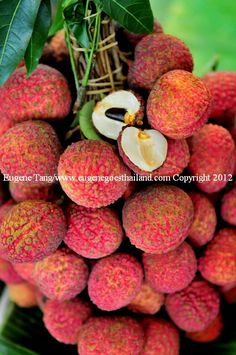 Walking in the streets of Chinatown, N.Y. in the summer you could find in almost every corner fruit vendors selling this delicious , juicy Lychee ! Yummo
