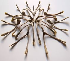 I know these aren't sticks....but wishbone art....interesting.  We used to have to take turns who got to break the wishbone growing up!  Great memories!!!