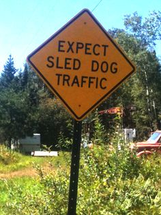 I saw this sign in Grand Marais, MN. It really made me laugh - the idea of sled dogs running across the road - especially since it was 90 degrees out. Coolest small town in America Grand Marais, Snow Dogs, Funny Signs, Dog Signs, Samoyed, Lake Superior, Street Signs, Sled, Mans Best Friend