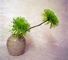 Simple Ikebana with 2 mums.