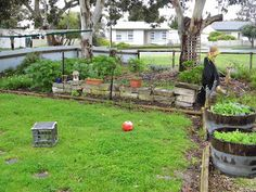 One Mother Hen: Veggie patch envy Veggie Patch, Envy, Veggies, Pumpkin, Homes, Garden, Outdoor, Outdoors, Vegetable Recipes